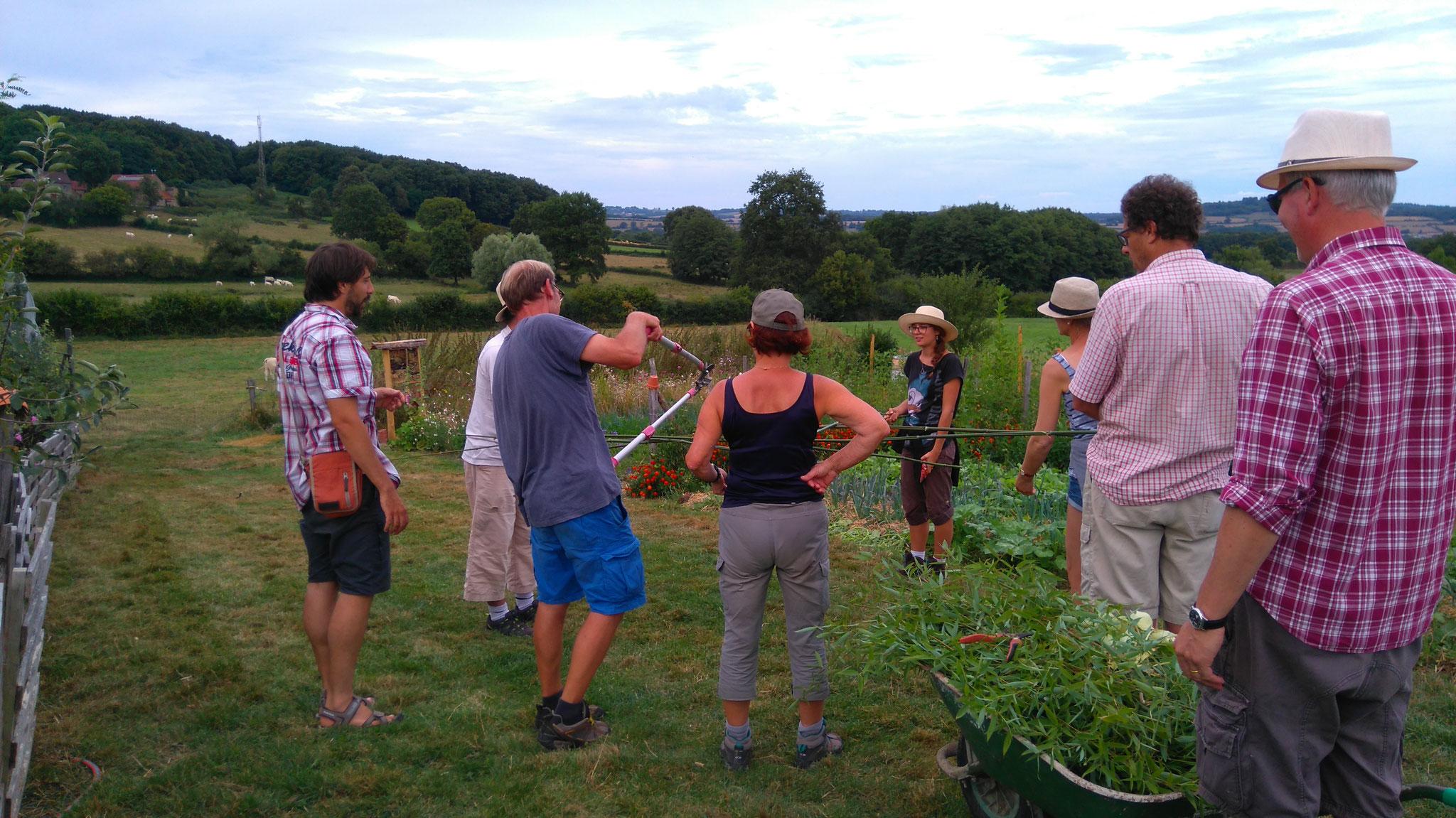 Groupe de stagiaires lors d'une formation permaculture aux Alôsnys