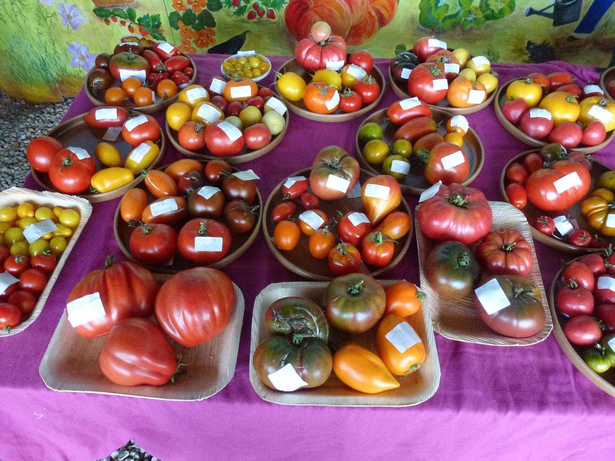 200 variétés anciennes de tomates