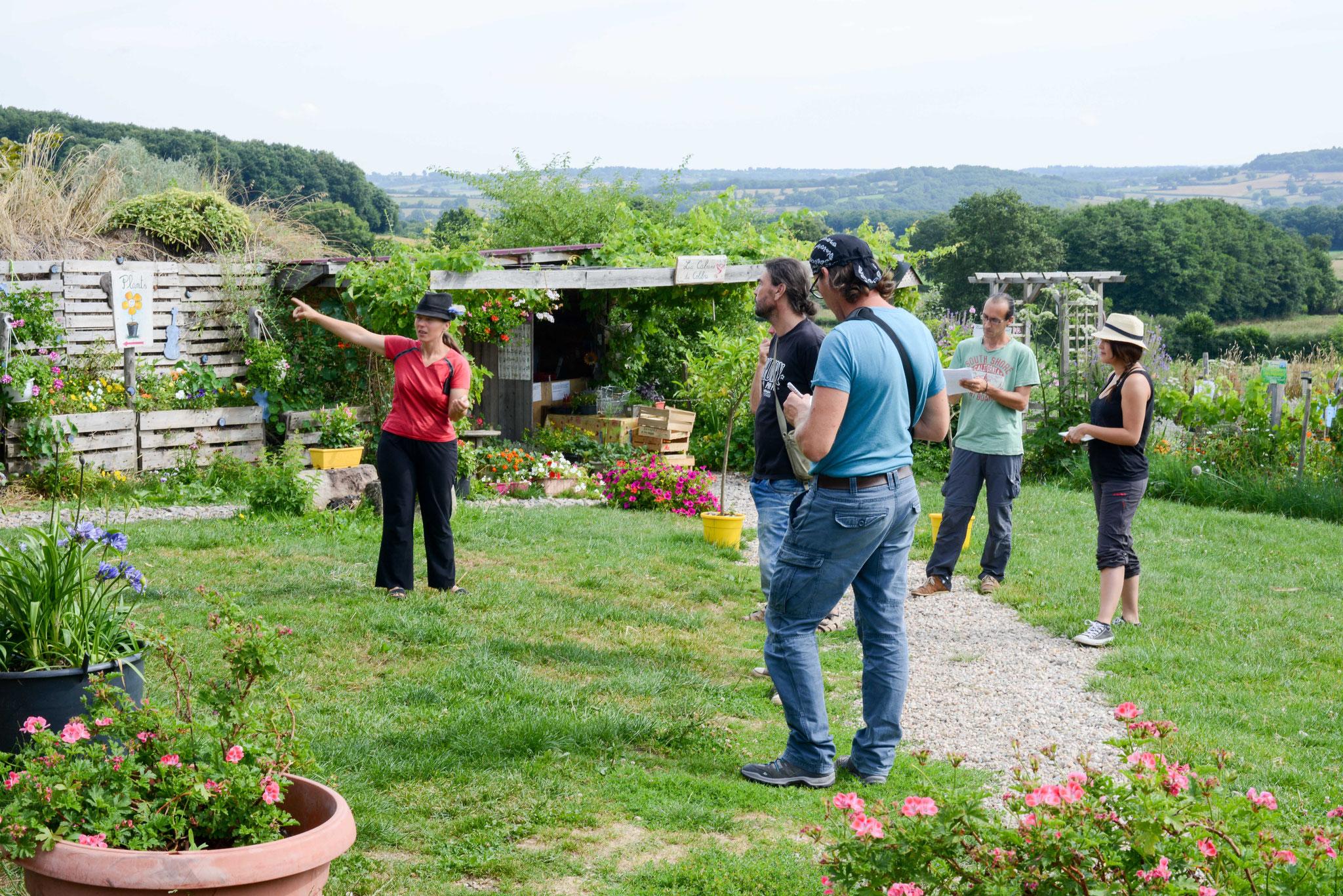 Formation permaculture avec Aurore