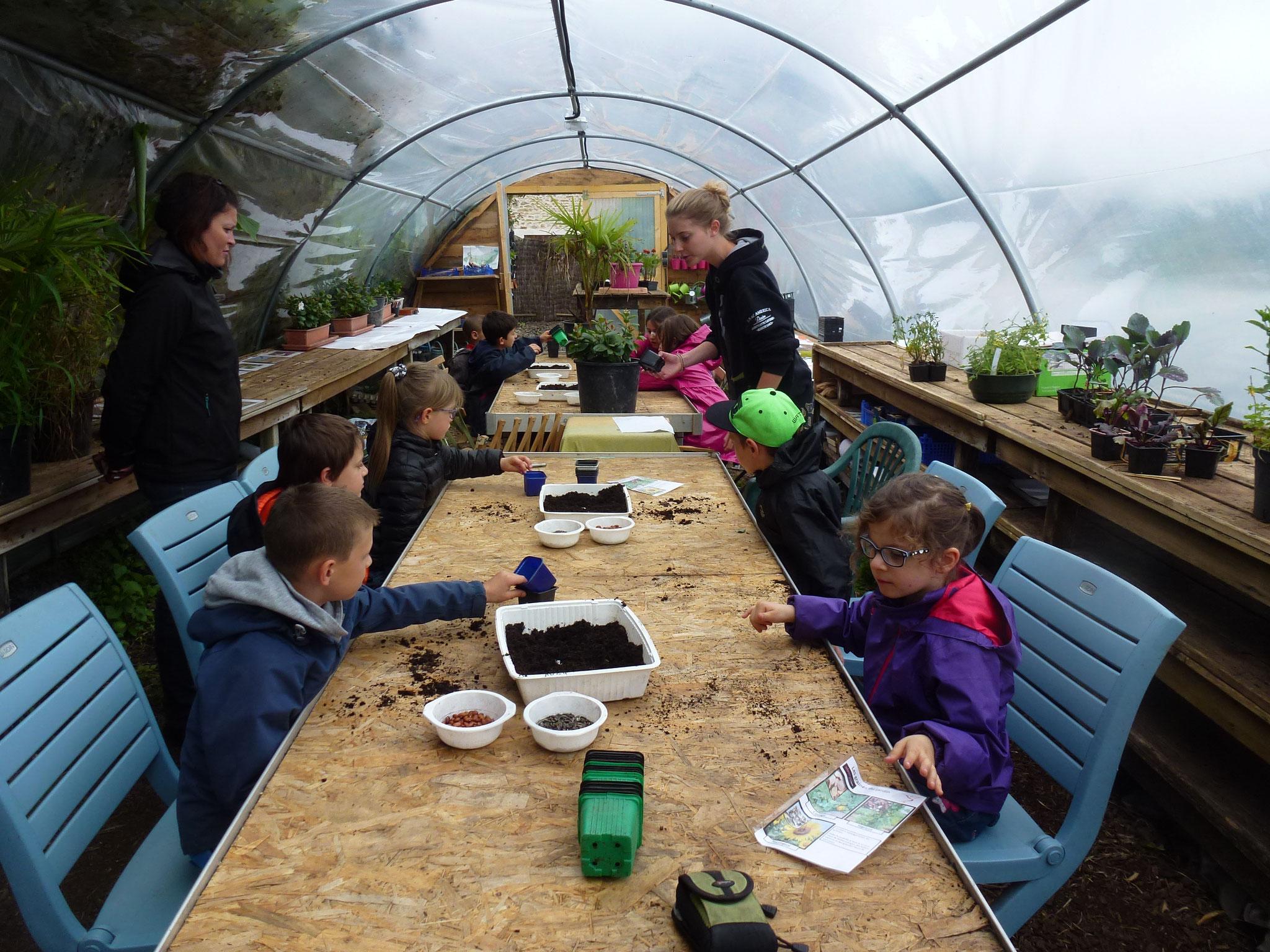 Atelier semis de graines