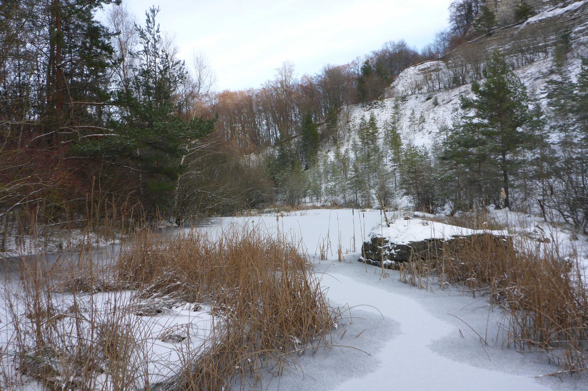 Winter im NSG Foto NABU B.E.