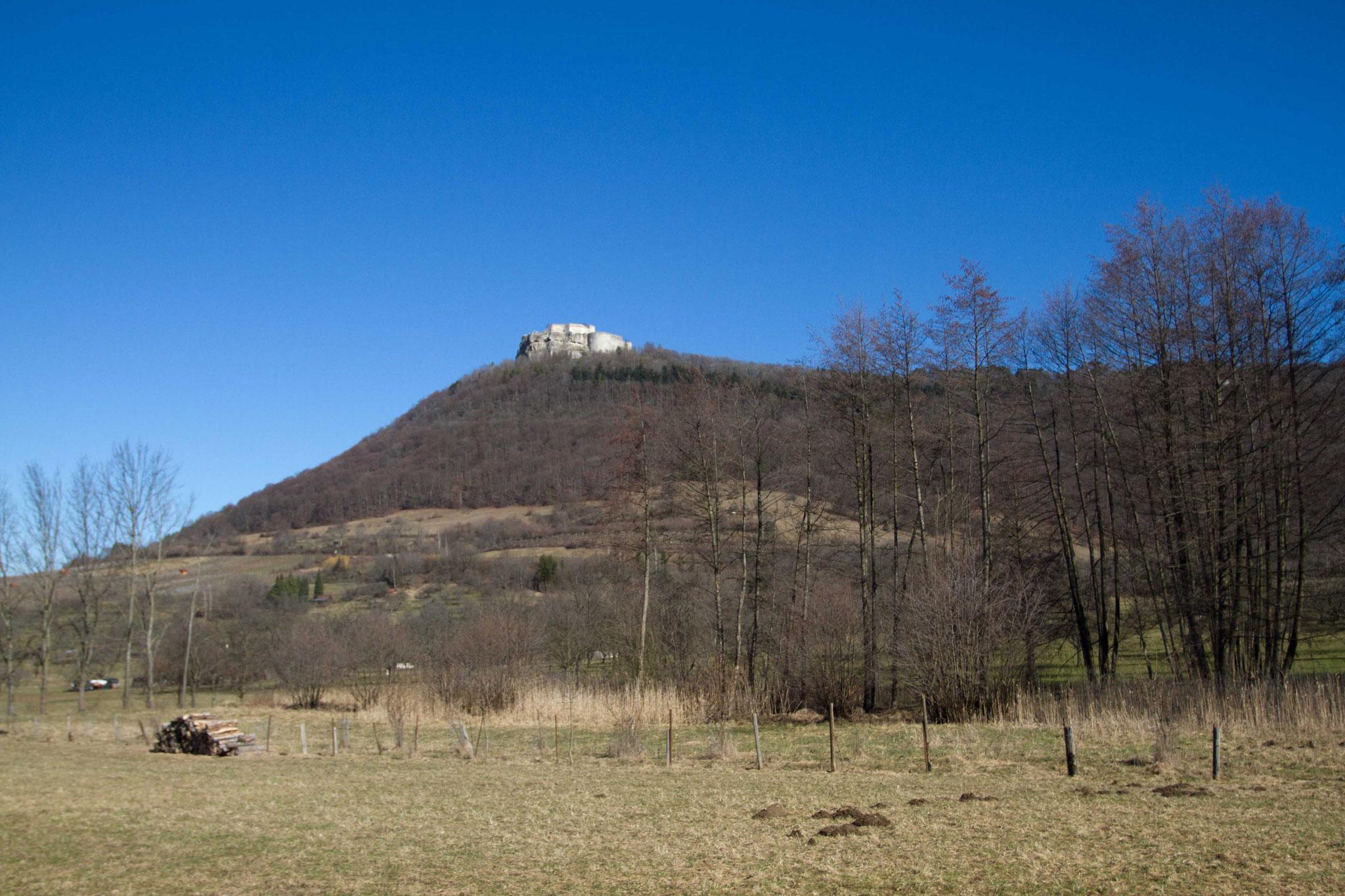 NABU Grundstück Foto NABU