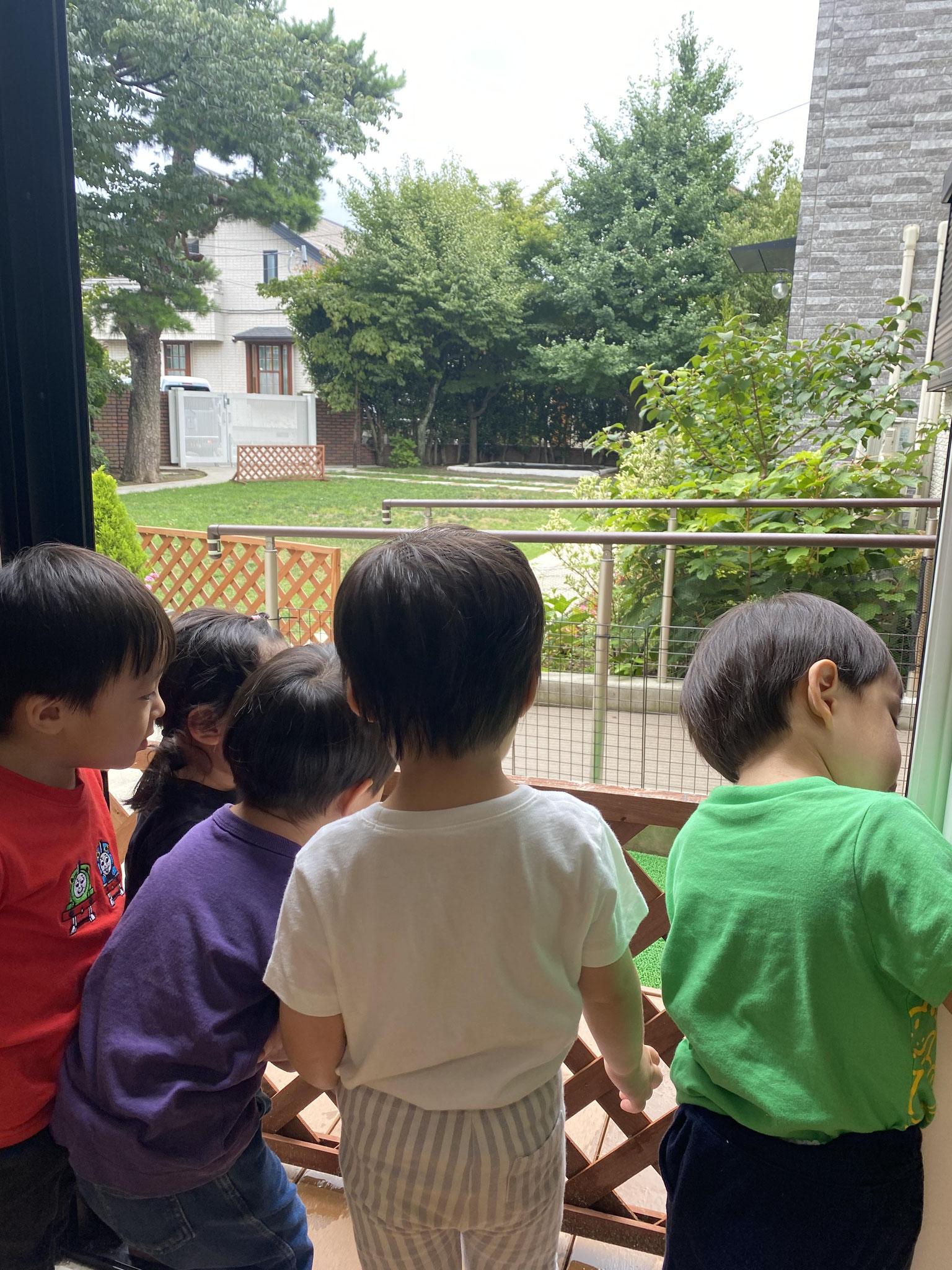 雨上がりの園庭のフェンスにみんなが興味津々です。。。何かな??