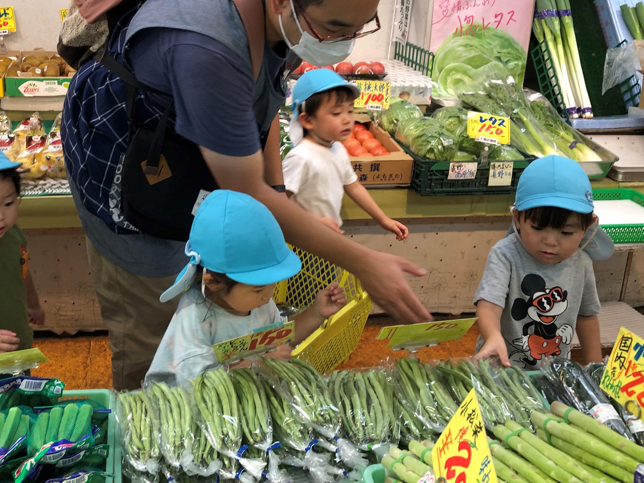 今日はお買い物にやってきました!お野菜も美味しそう。さて、さて何を買うのかな?