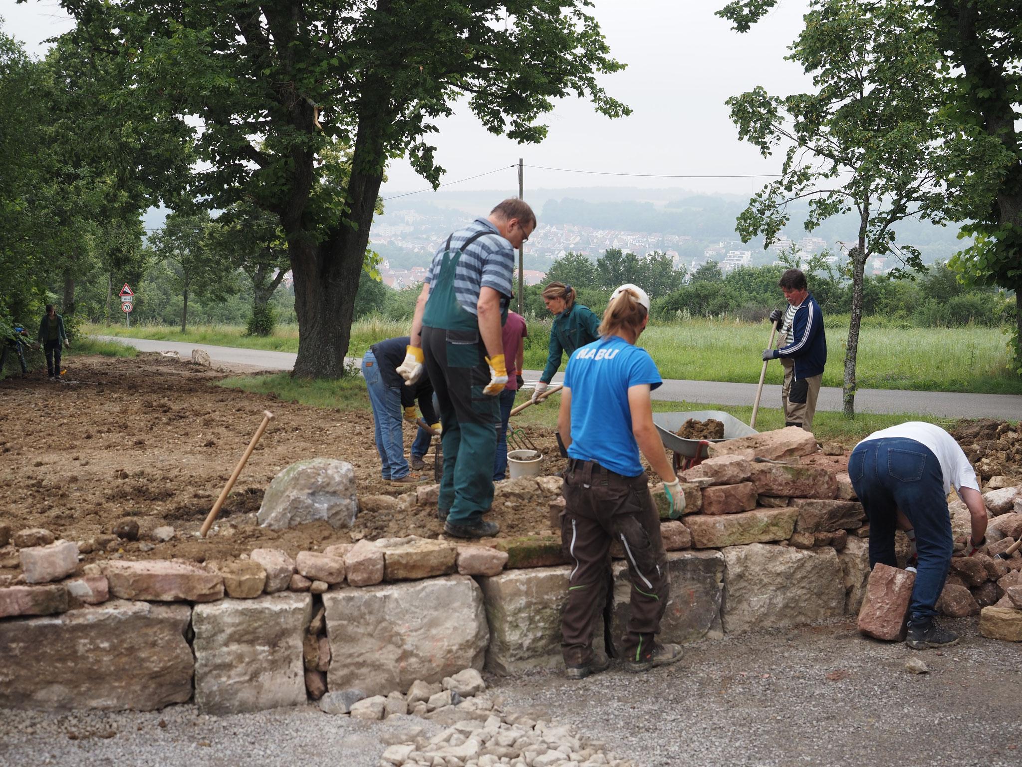 Bau der Trockenmauer