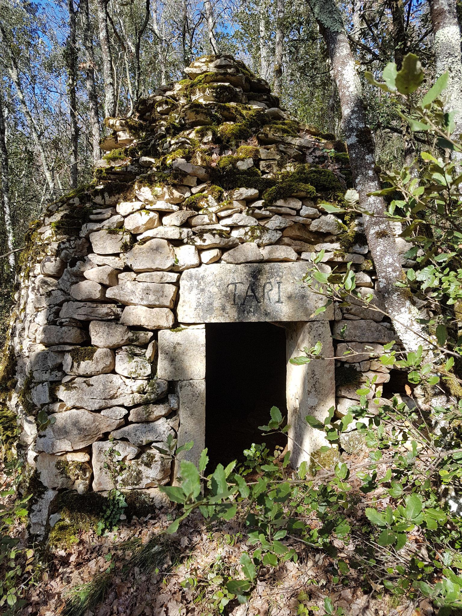 La maison de Tari... au fond de la forêt