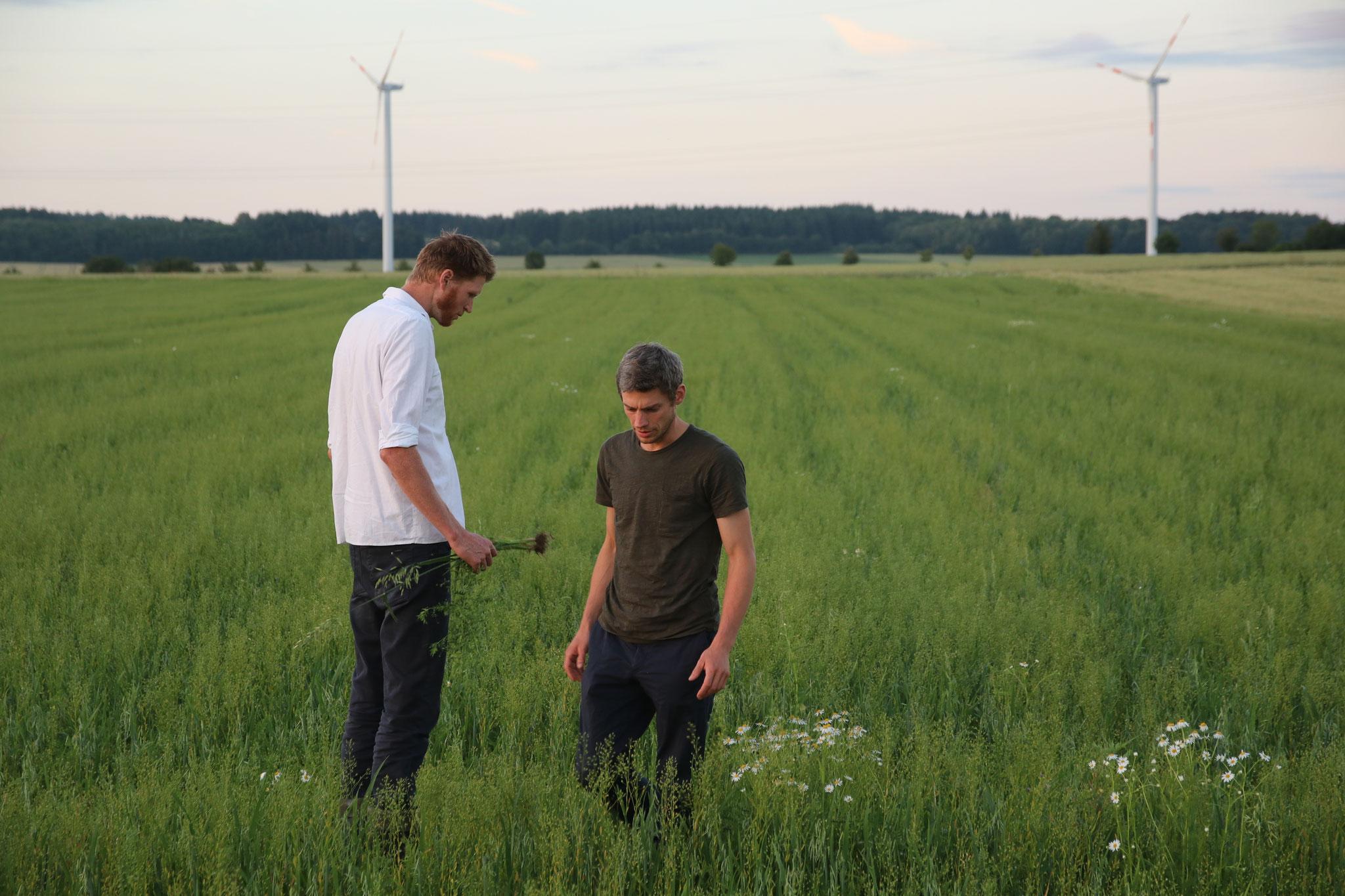 Regelmäßig kontrolliert der Landwirt die Bestände.