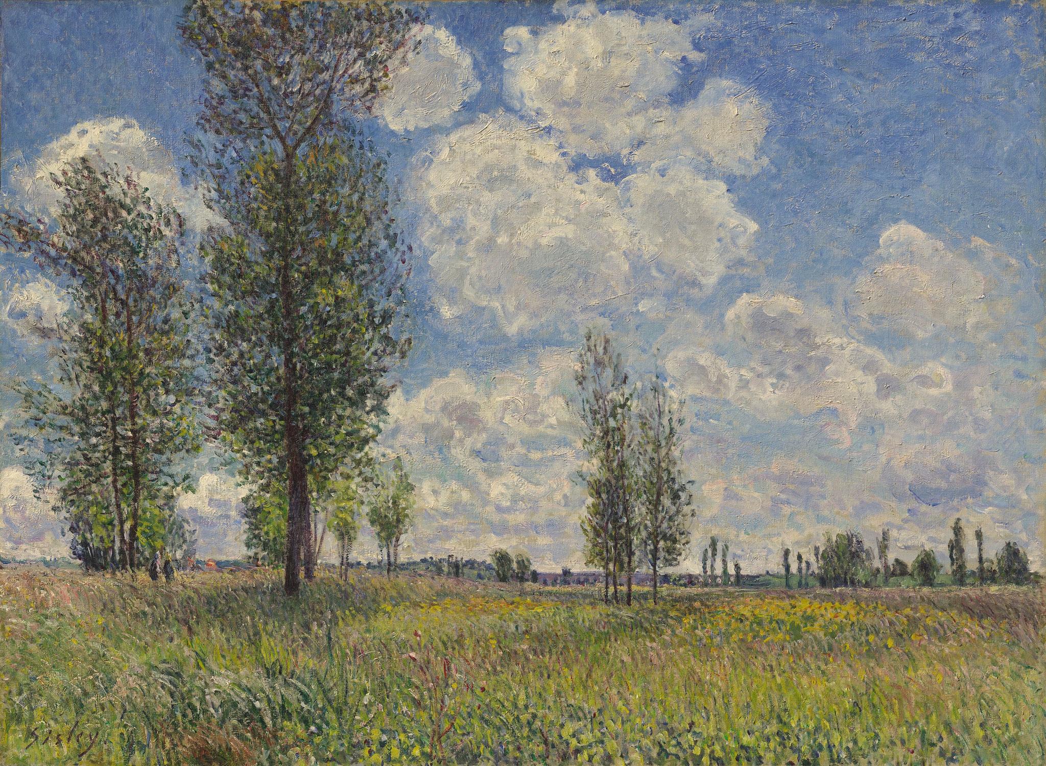 Alfred Sisley: Wiesen von Veneux-Nadon, 1881, Privatsammlung, Scan: RECOM ART