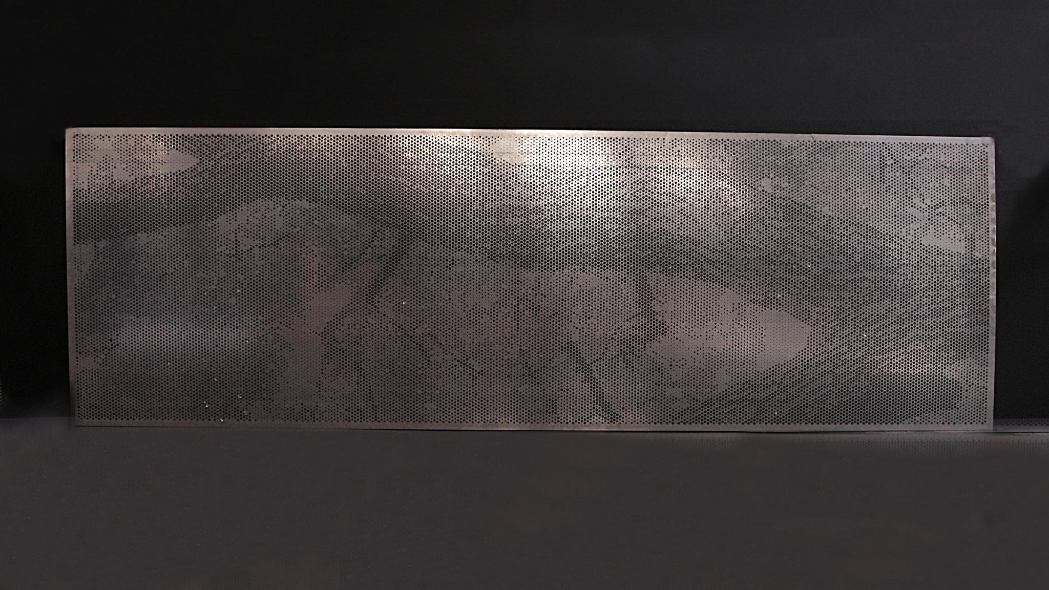 Lochblechdesign Baum-Motiv  82 Oberschule Dresden Motivlochblech Fotoblech