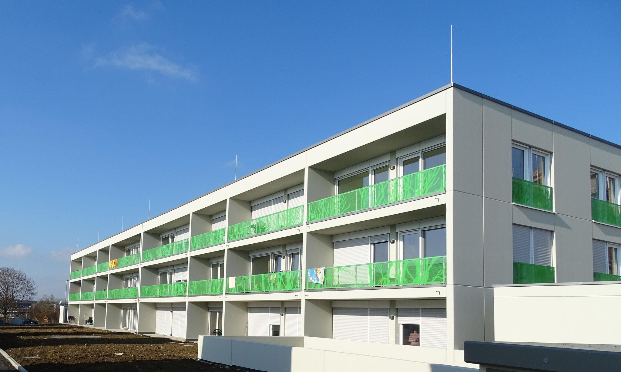 Grünzeug für Balkon und Fassade