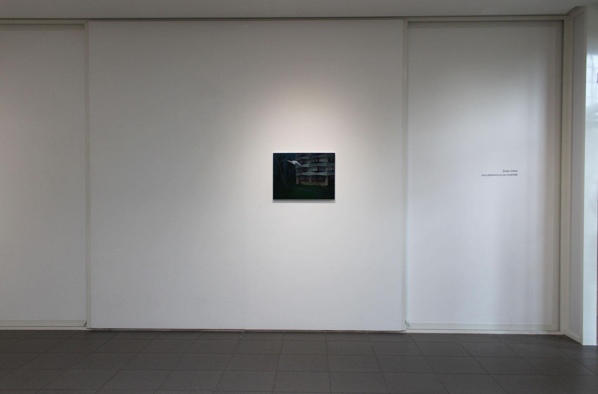 Vue de l'exposition Dorian Cohen, nous danserons un jour ensemble