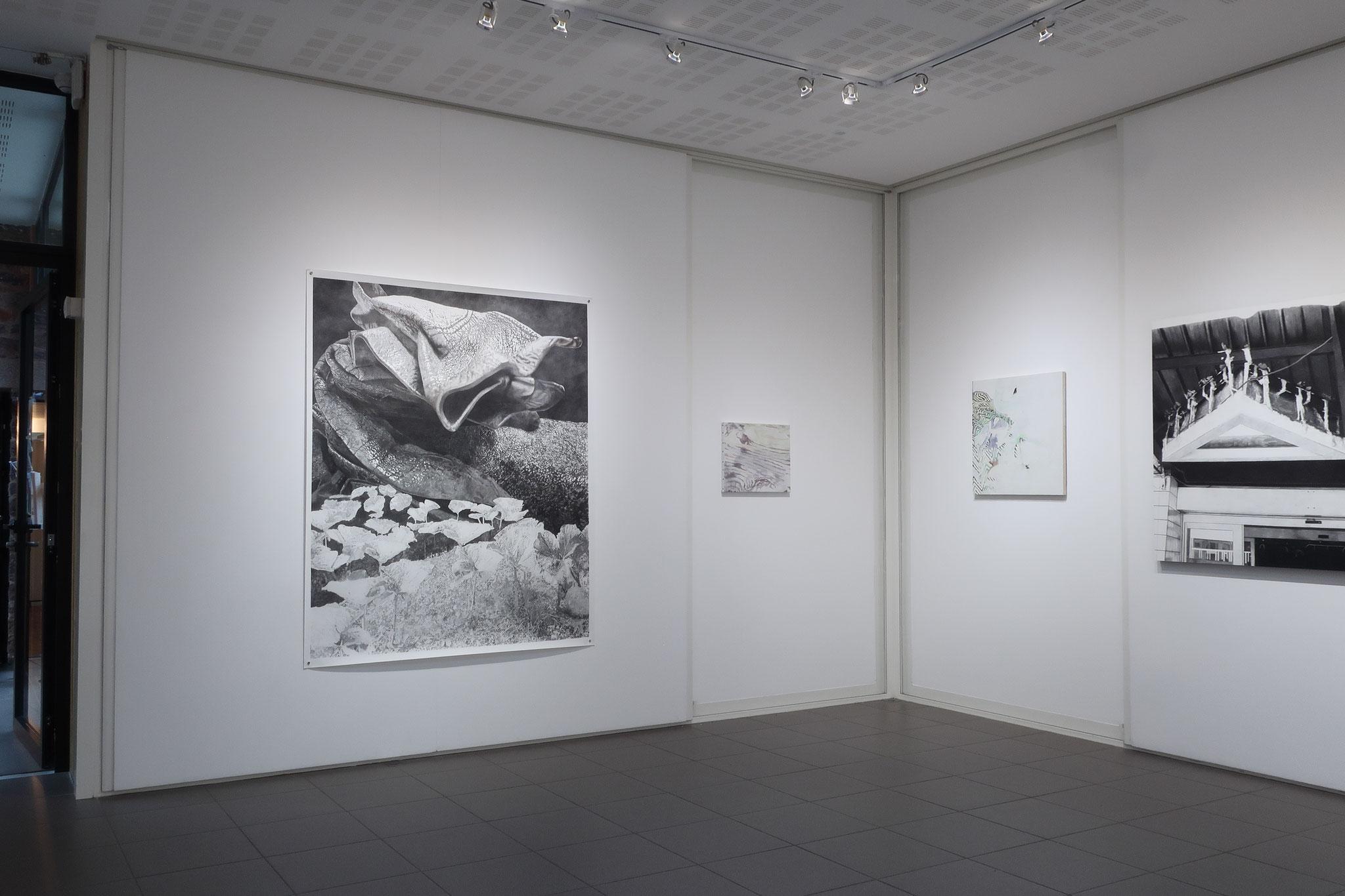 Vue d'exposition, Plasmes, L'aparté, Iffendic, 2018