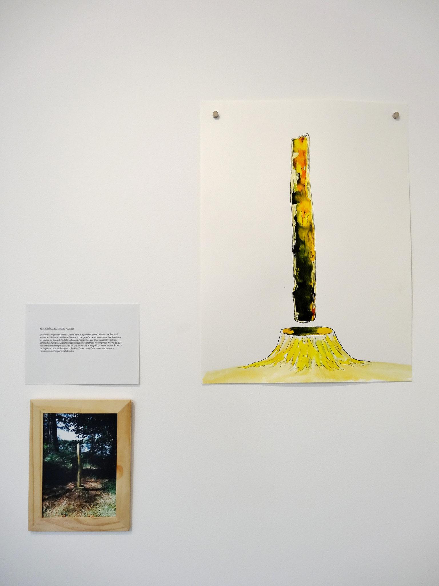 Noël Rasendrason, Noboru, 2016. Encre sur papier Arches 300 gr., 31 × 41 cm.