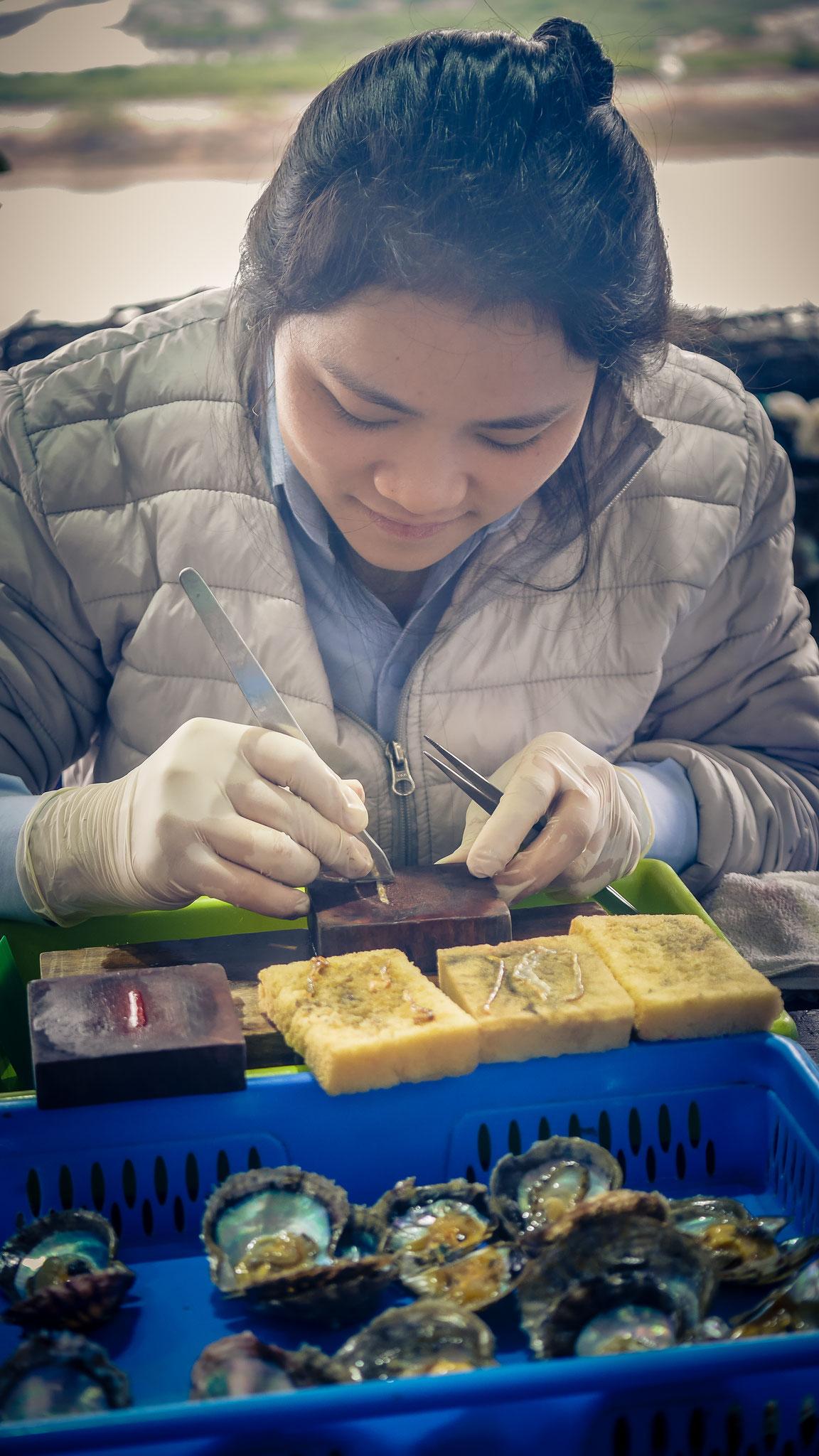 auf dem Weg zur Halong-Bucht - Rast in Perlenzuchtfirma