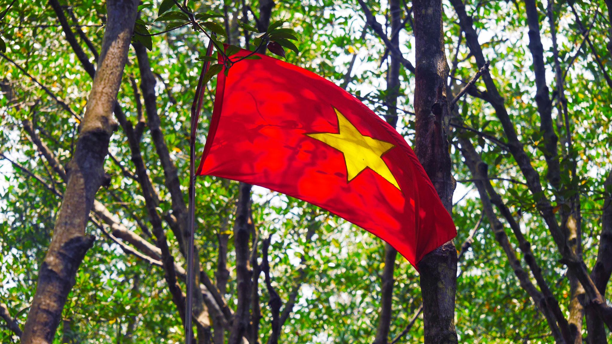 Monkey Island - unterwegs in den Mangrovenwäldern