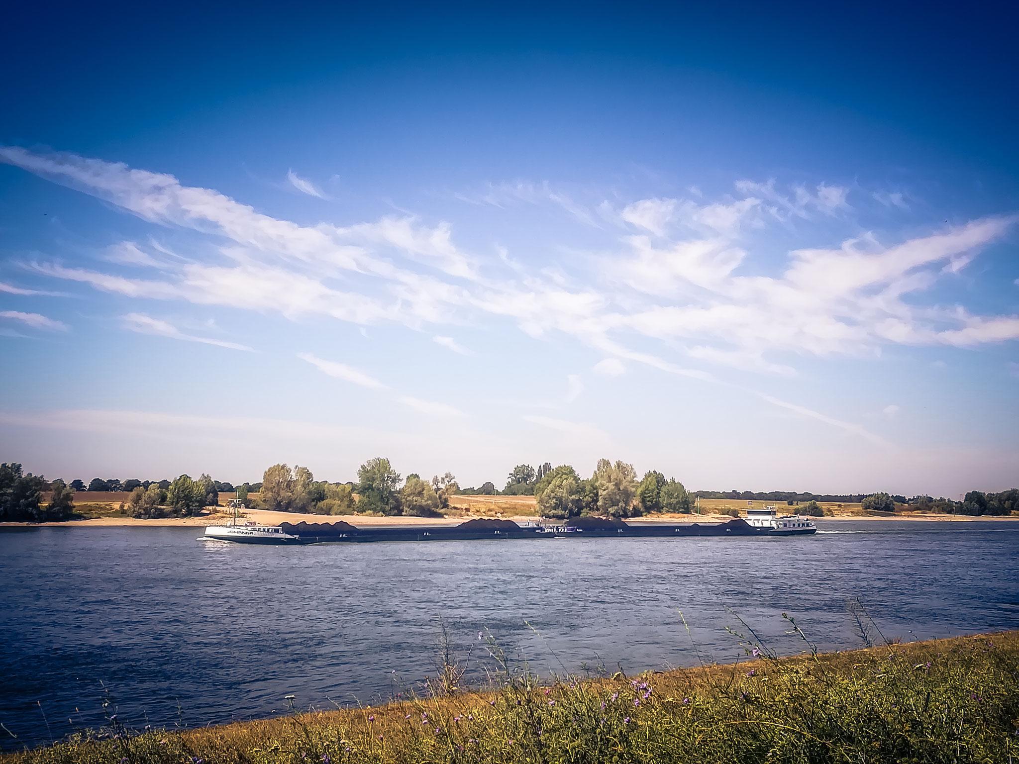 ...irgendwo am Rhein