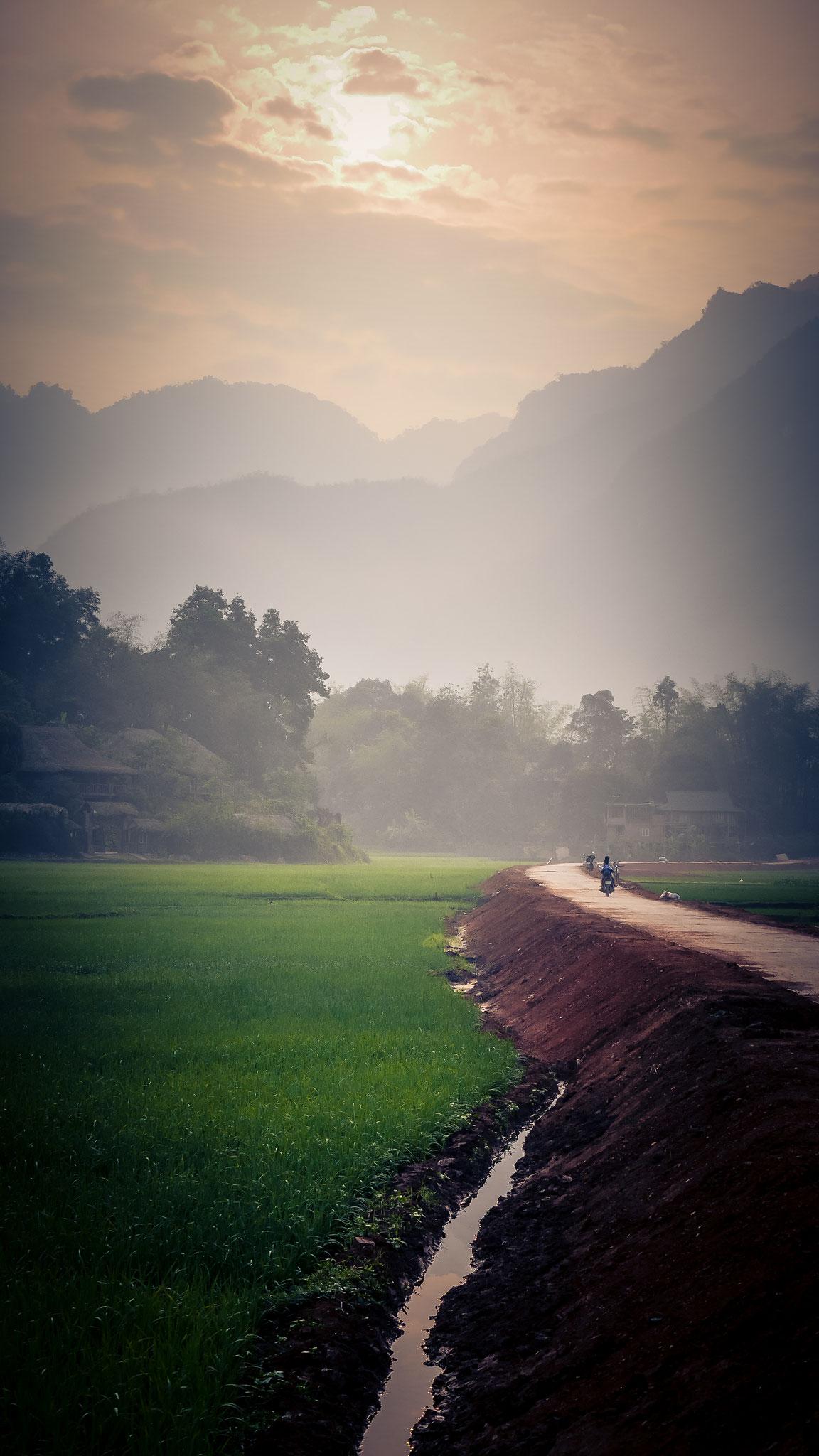 Mai Chau - Reisfelder beim Sonnenaufgang