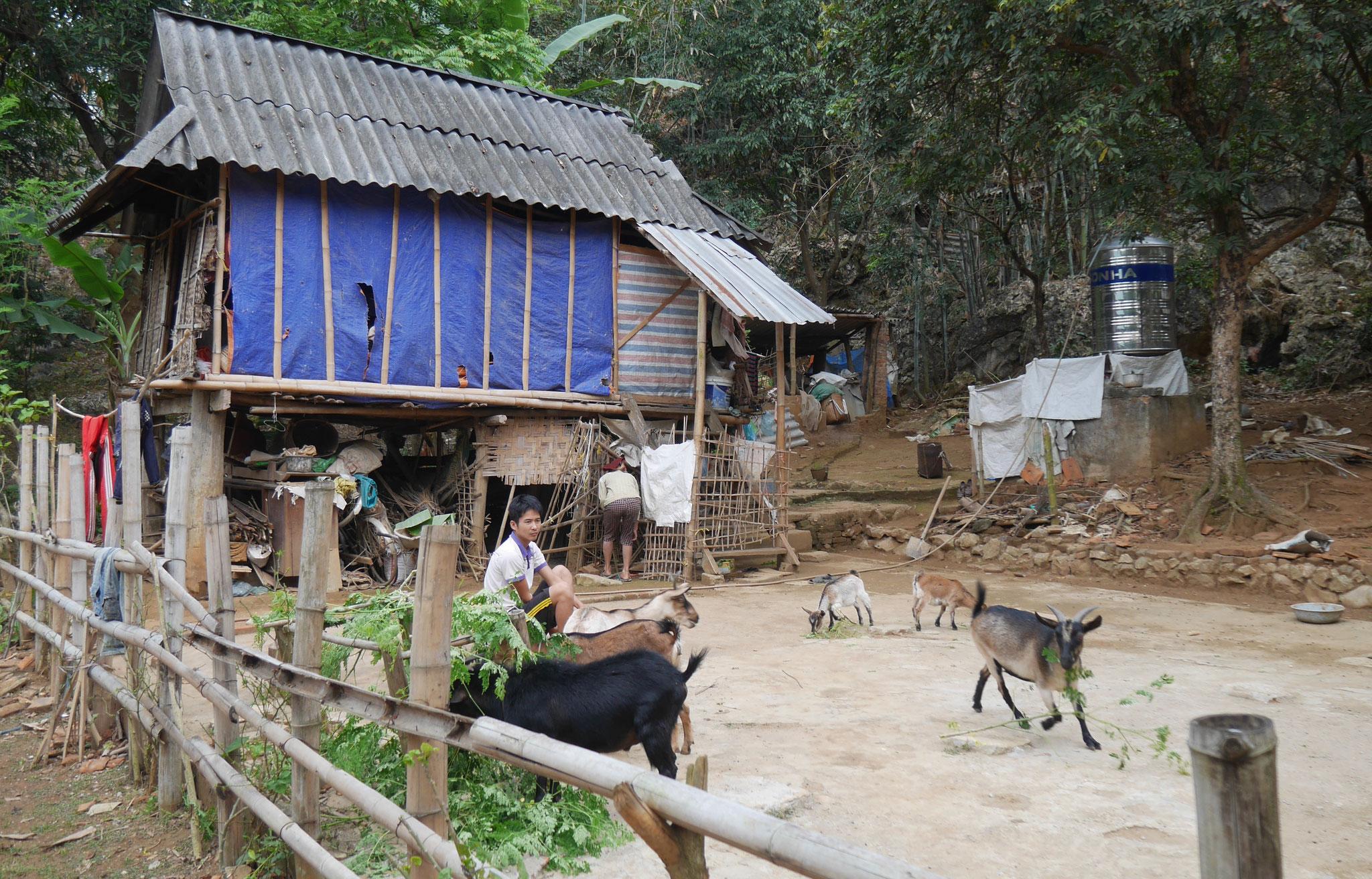 Radtour durch die Reisfelder Mai Chau