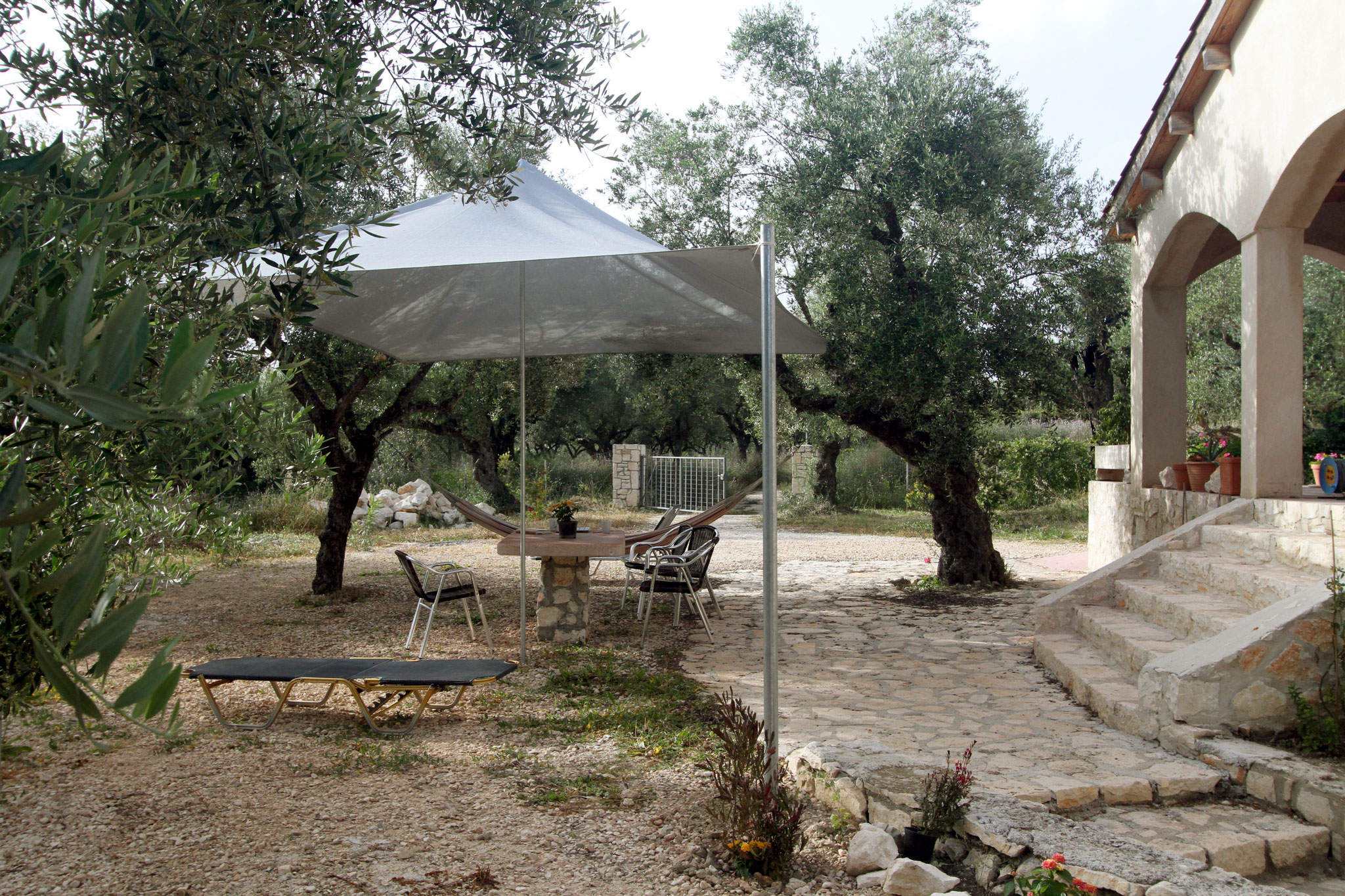 The eco villa eco villa zante