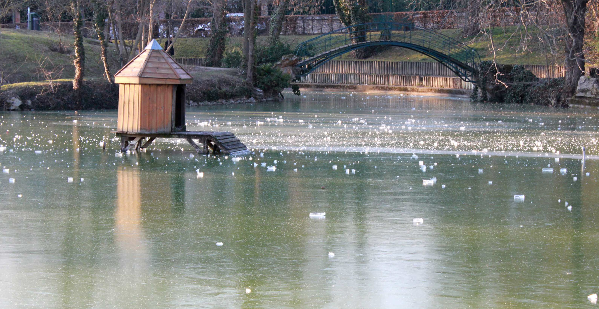 Parc à Verriere le Buisson (91) Gel de l'hiver 2012