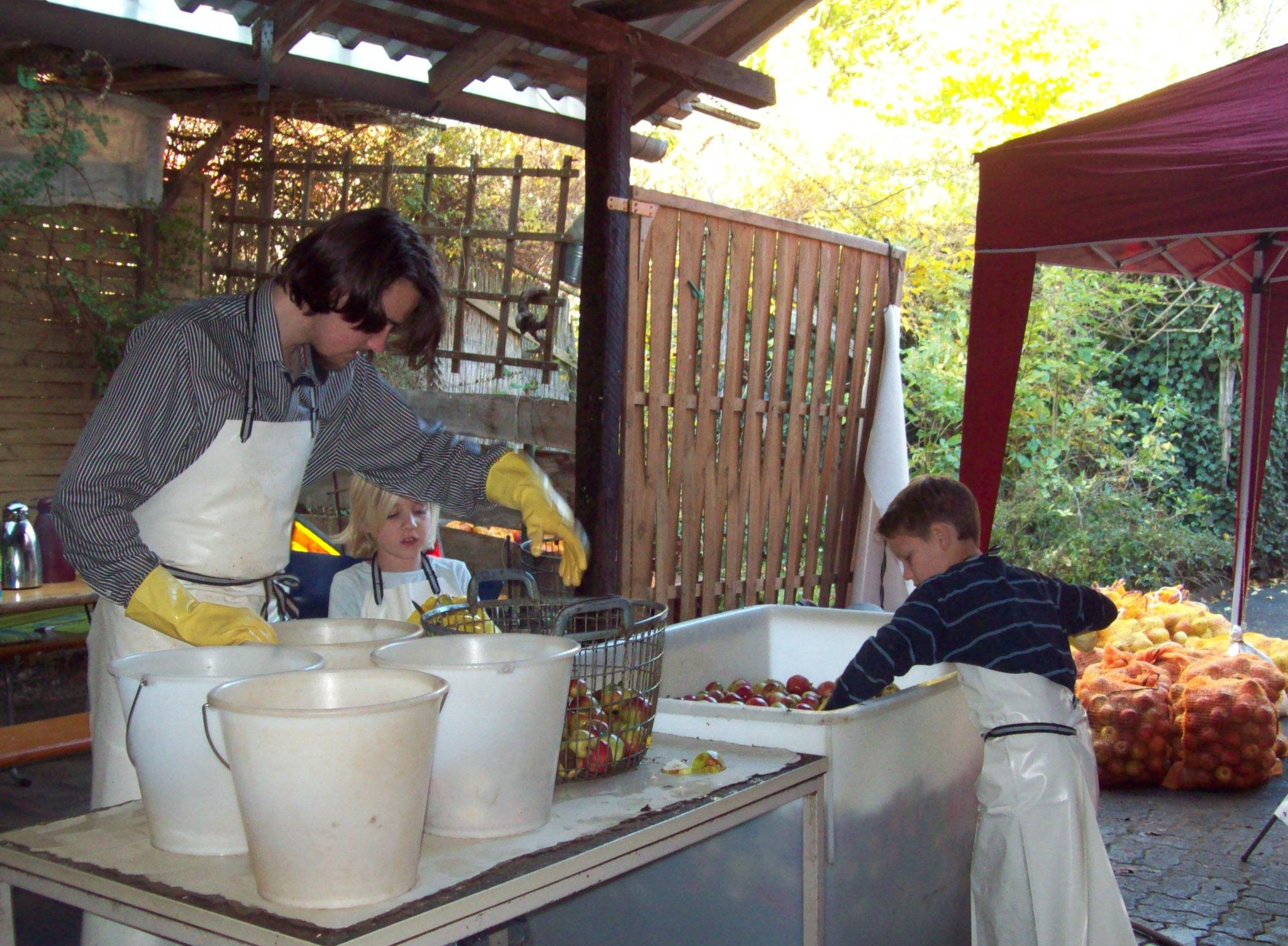 Reinigung und Ausschneiden von Faulstellen