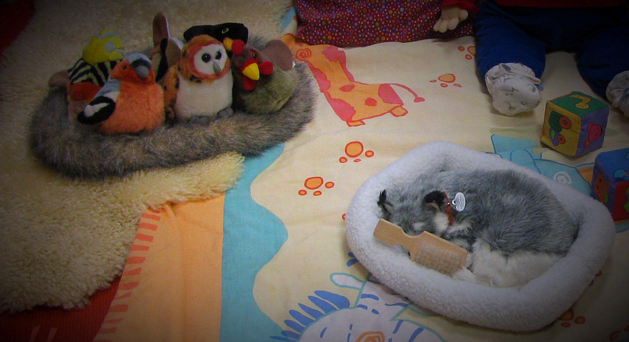 Jeux d'éveil sensoriel : animaux tout doux à caresser, manipuler, à écouter
