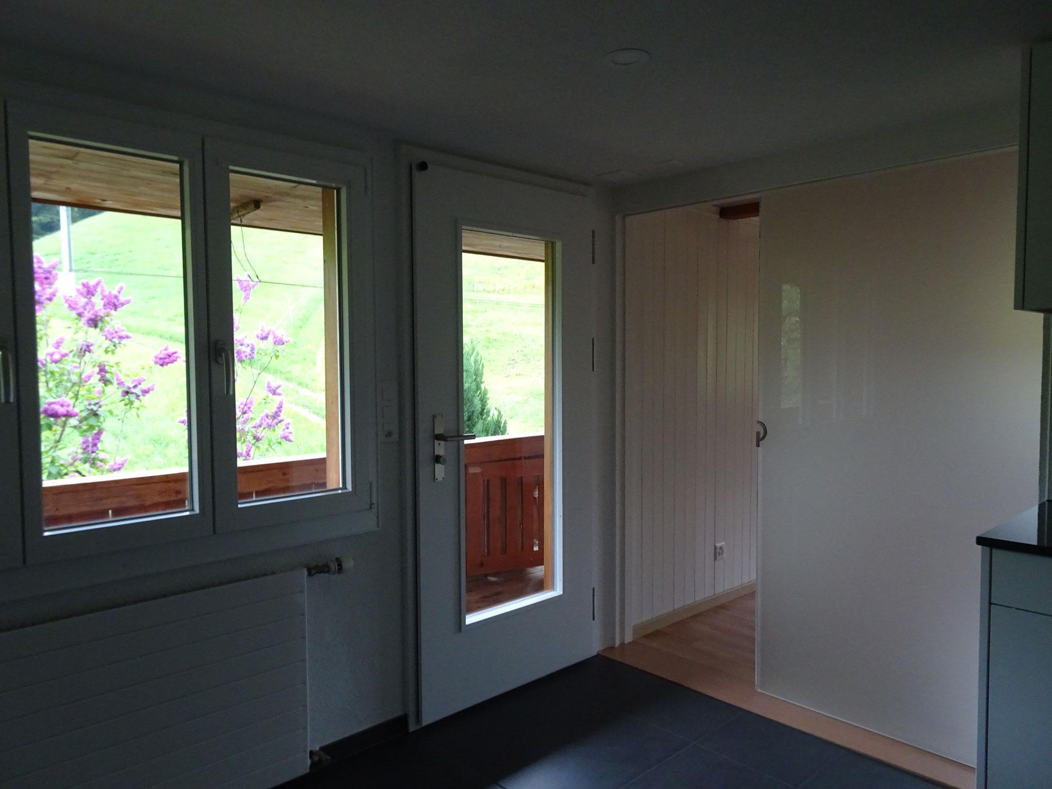 Hauseingangtüre / Raumtrenner Glas