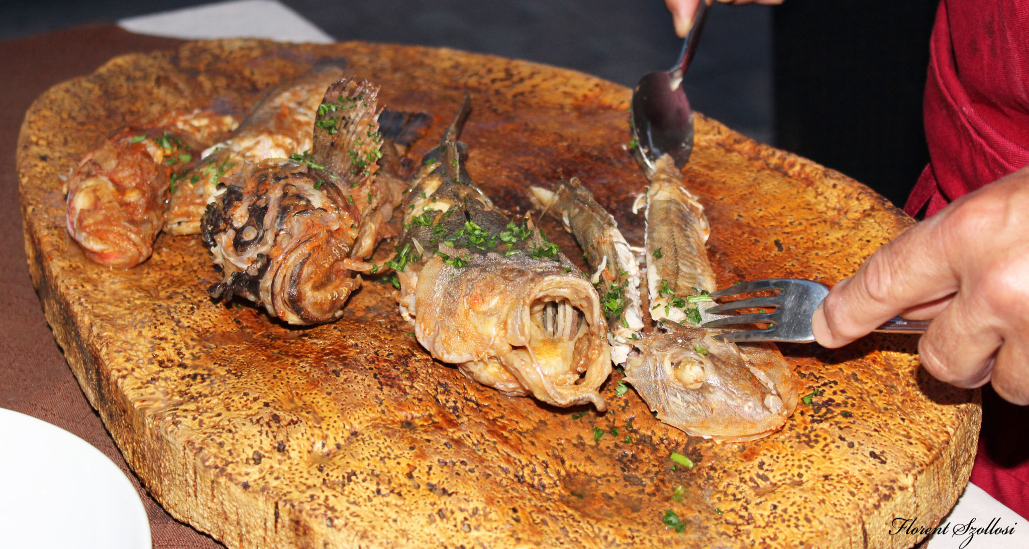 plateaux poissons sauvages