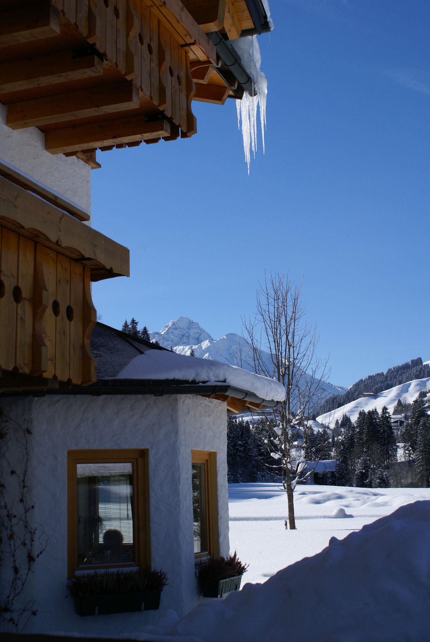 Hilbrand Appartements - Ausblick nach Hirschegg