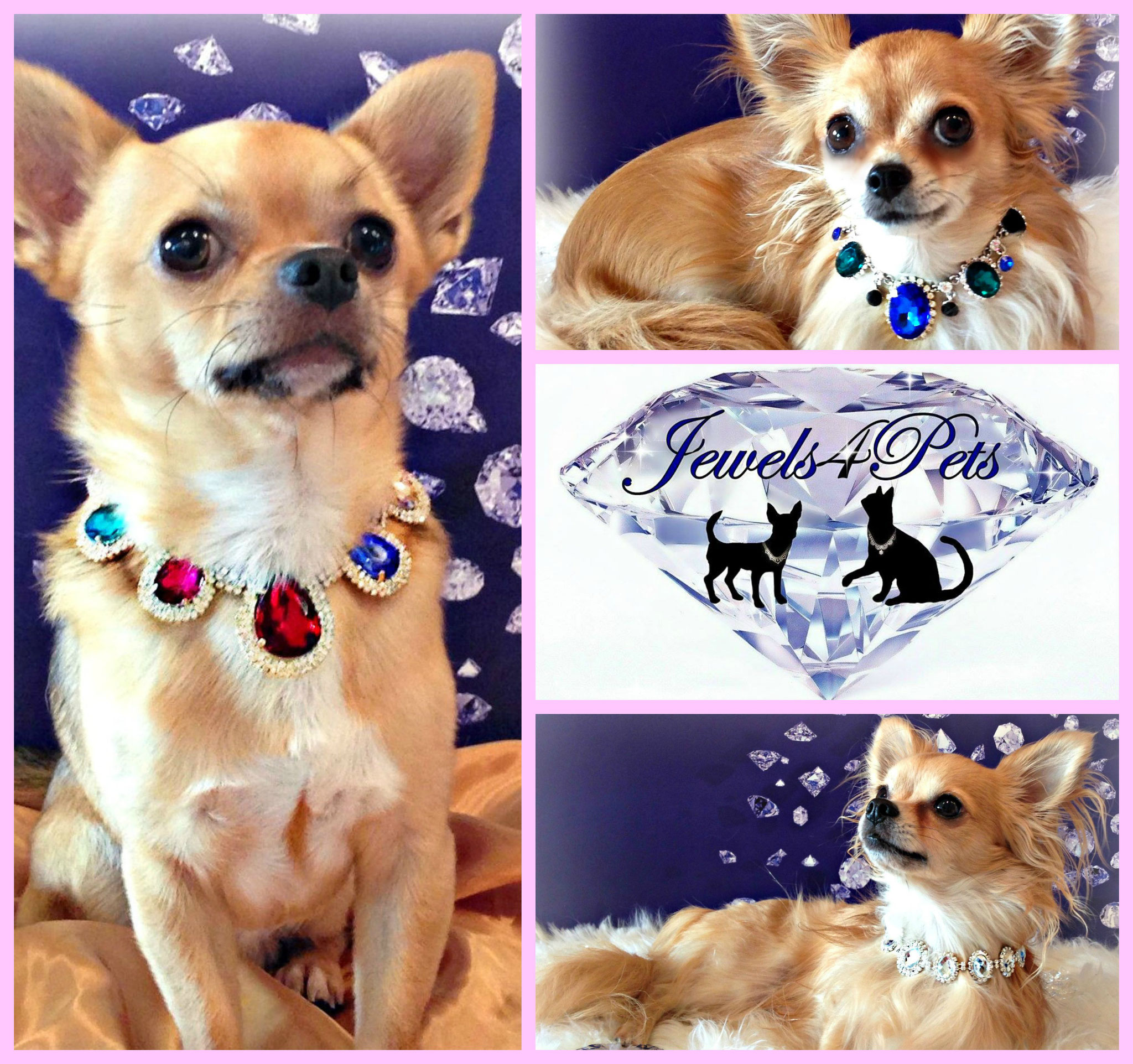 Jewels4Pets luxury dog necklace Exclusive freshwater cultured pearl dog collar adjustable 9-12 inch wedding dog jewelry handmade unique