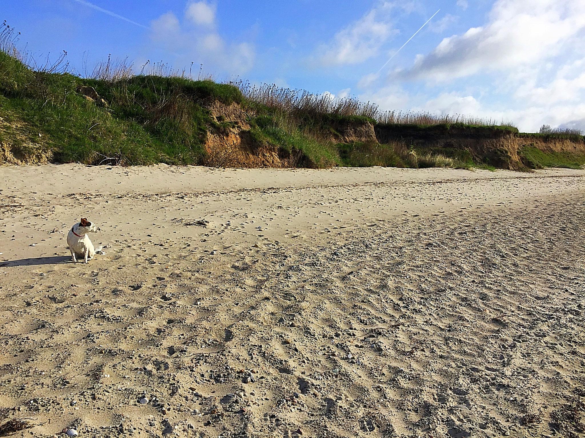 Beim Strand sind Sie in 5 Minuten zu Fuss