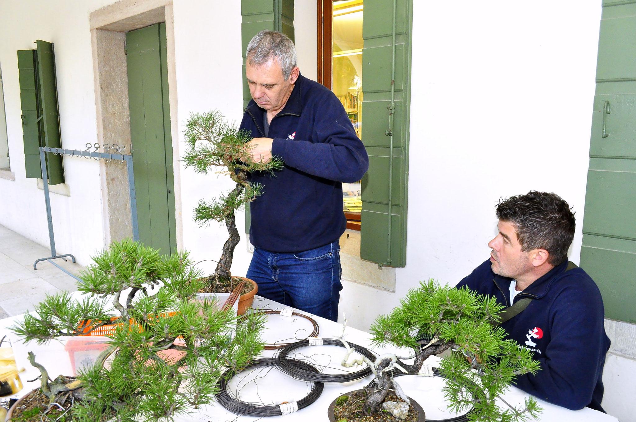 Soci in tenuta da combattimento (lavorazione piante all'esterno della mostra)