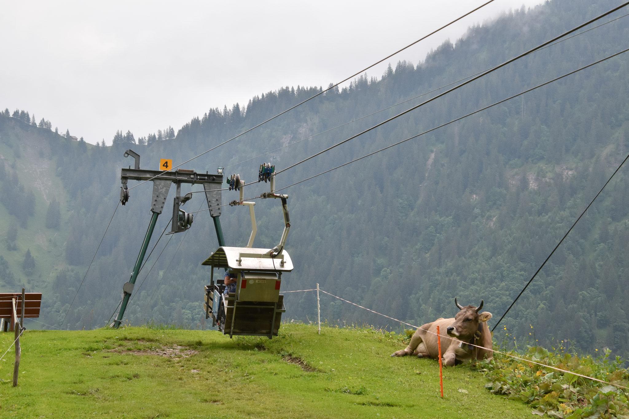 Die luftige Seilbahn für vier Personen, die zur Alp führt.