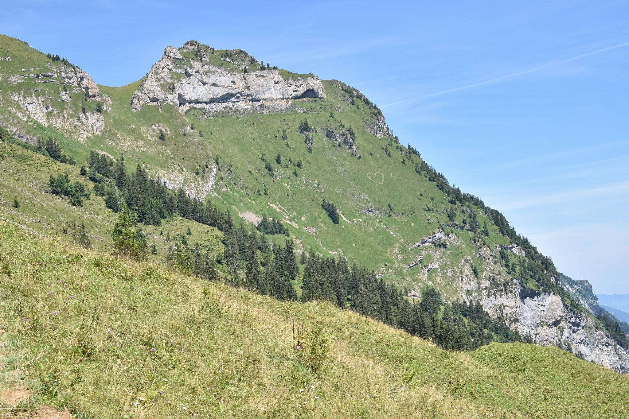 Wildheuen mit Herz: Das vor vielen Jahren erschaffene Herz im steilen Hang wird regelmässig ausgemäht.