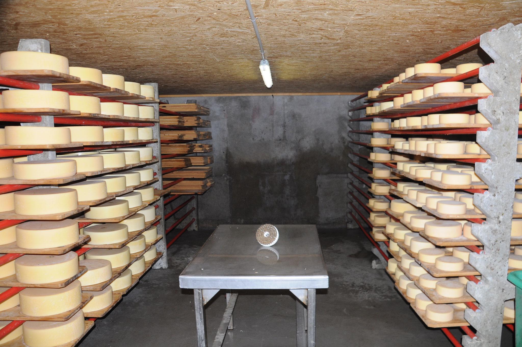 Der Keller, wo unser Käse lagert und reift.