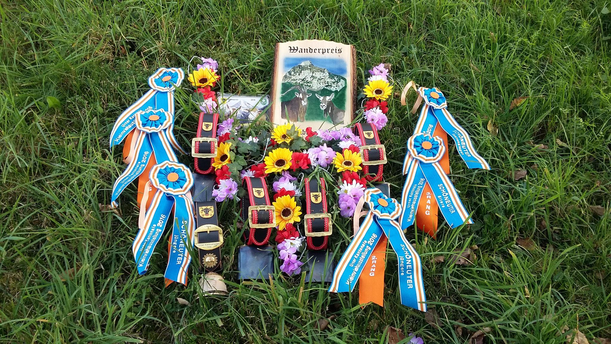 Unsere Ziegen brachten uns schon viele Preise an Ausstellungen ein.