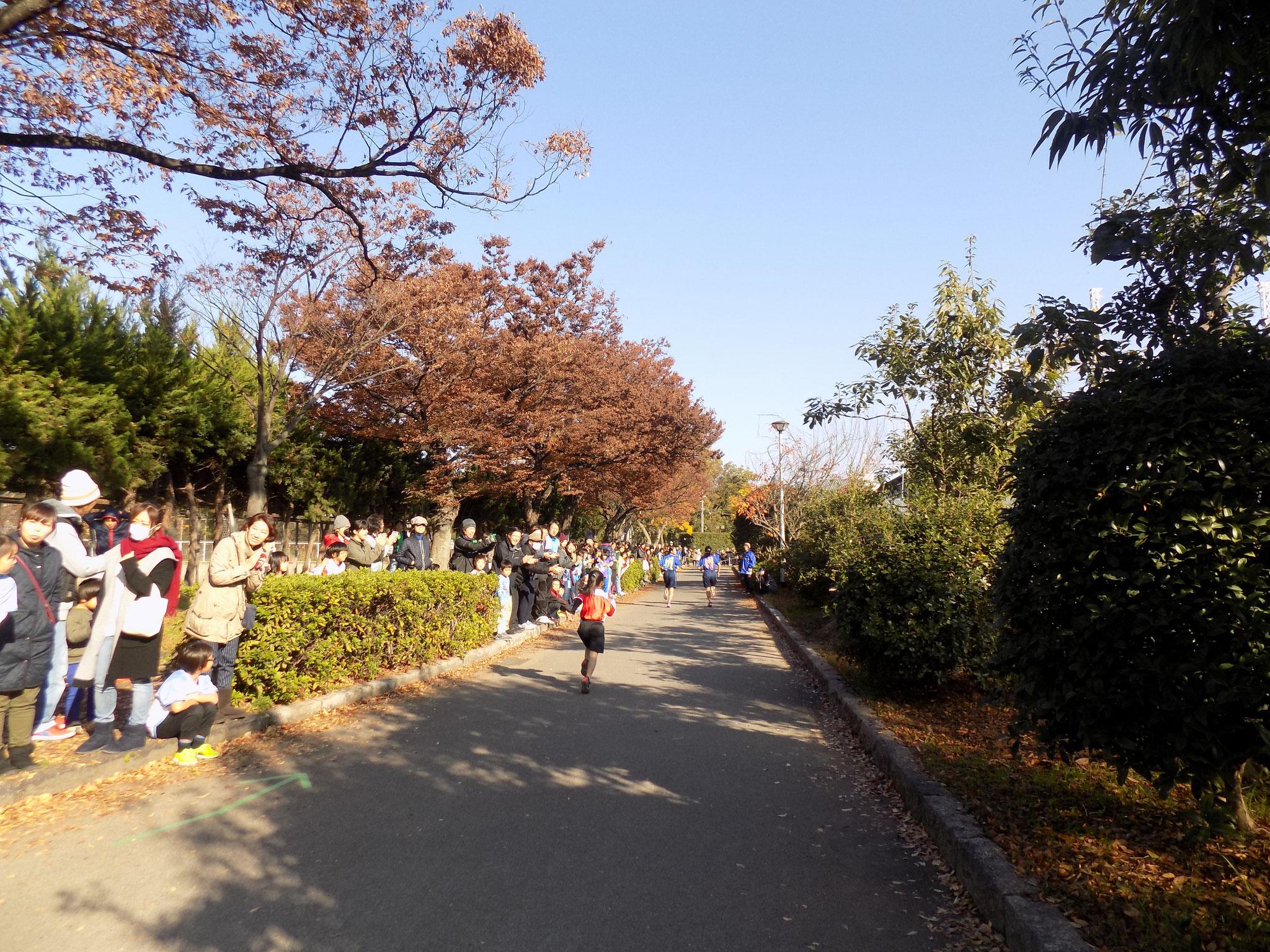 マラソン風景1