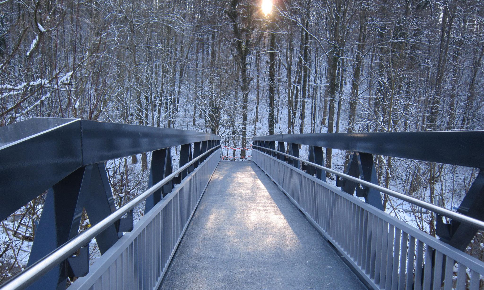 Fußgängerbrücke Neckarzimmern