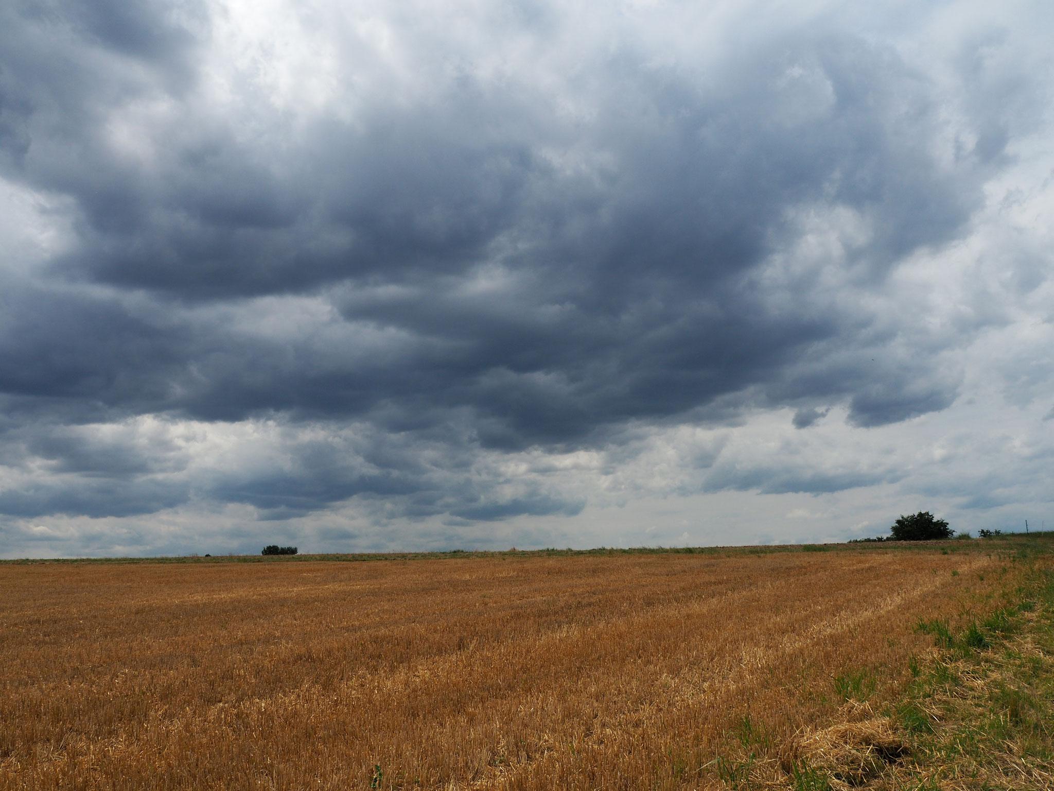 Der ersehnte Regen naht Anfang August.