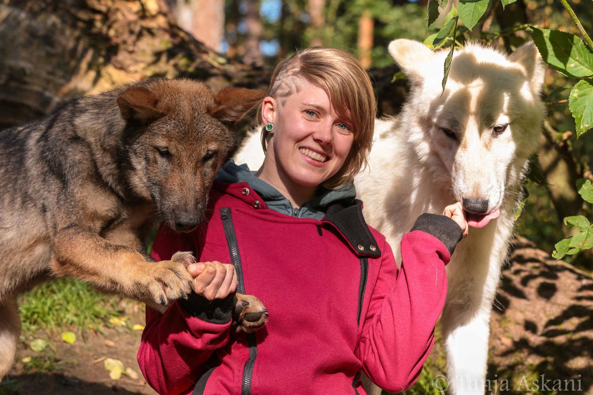 September 2017 - Besuch bei Tanja Askani und ihren Wölfen