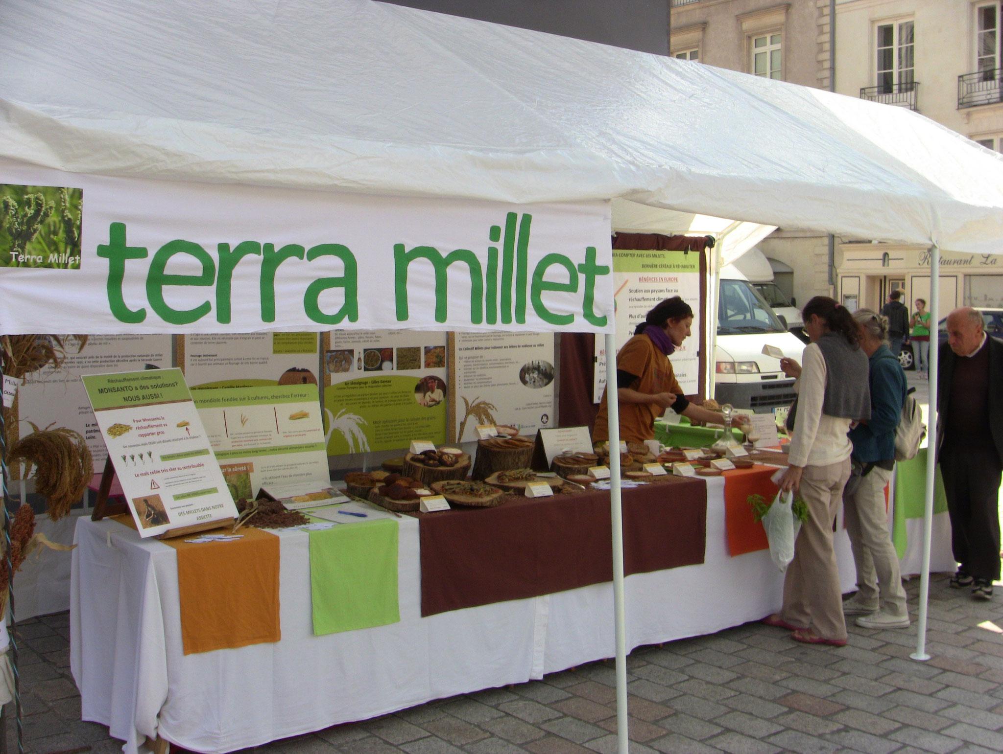 Terra Millet