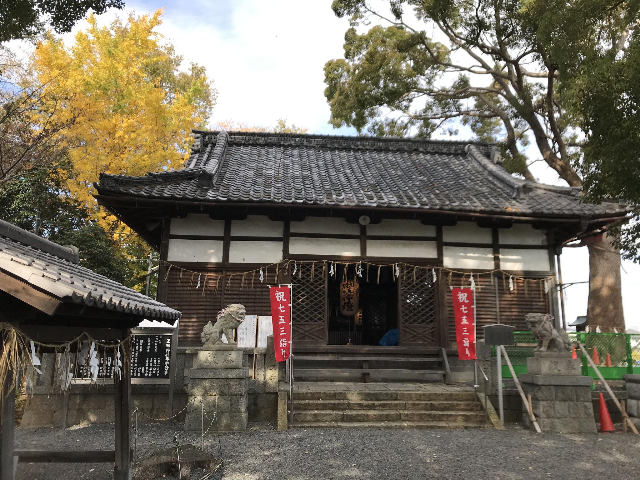 玉田神社の銀杏2