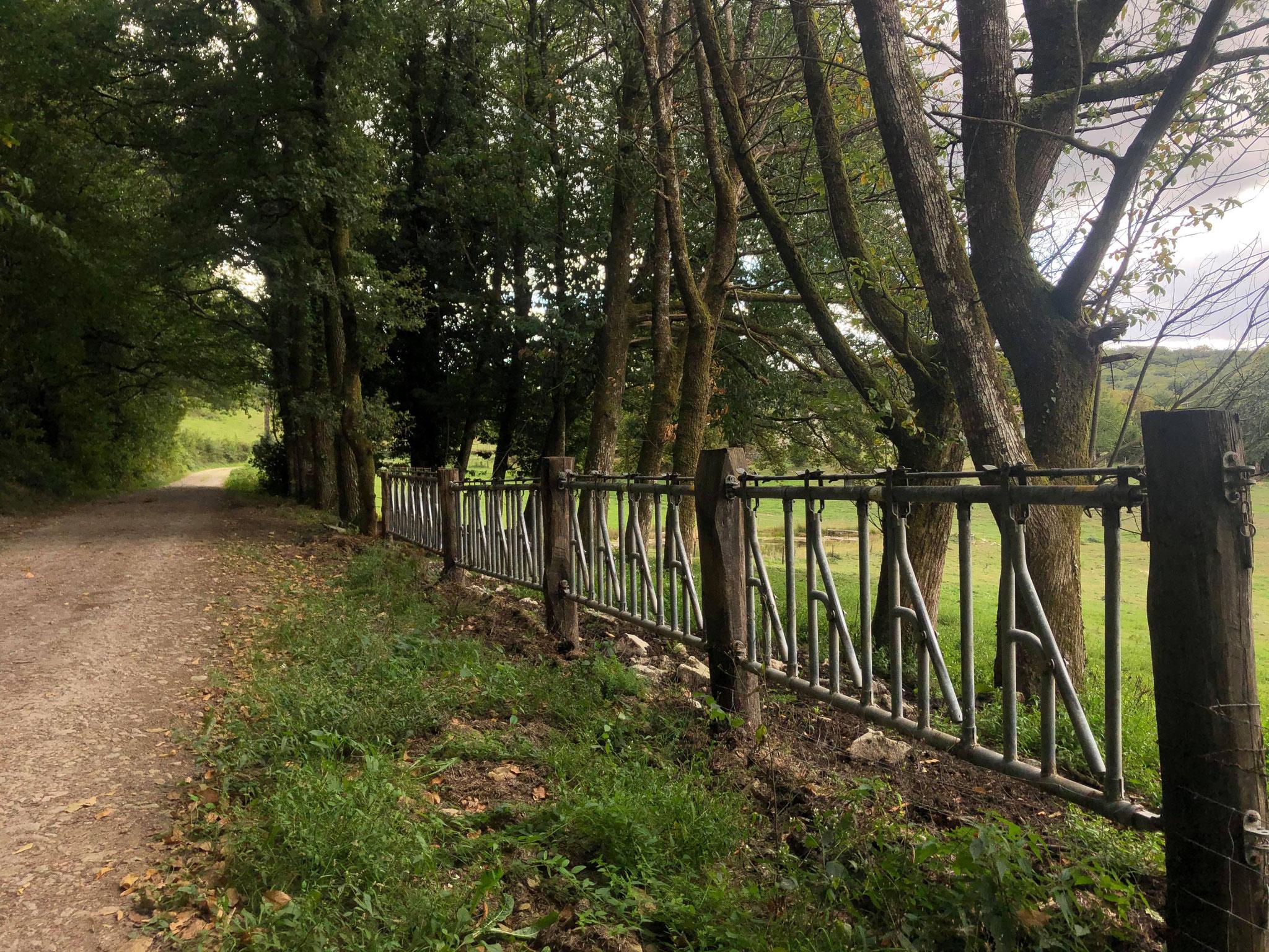 """Sentier de randonnée """"des clochers et des étangs"""""""