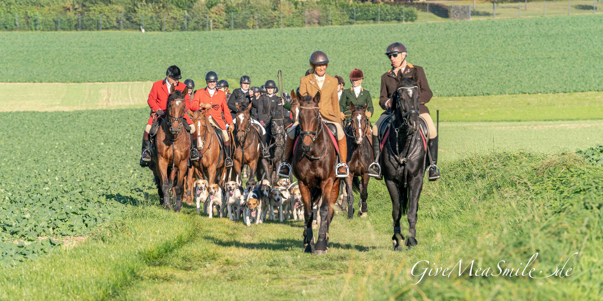 Jagdfotos vom Team @Givemeasmile.de auf der Fotojagd, Peter Jäger  #Melle #HofDettmer #Ostwestfalenmeute #givemeasmilede #foxhounds #beagles #jagdreiten #schleppjagd