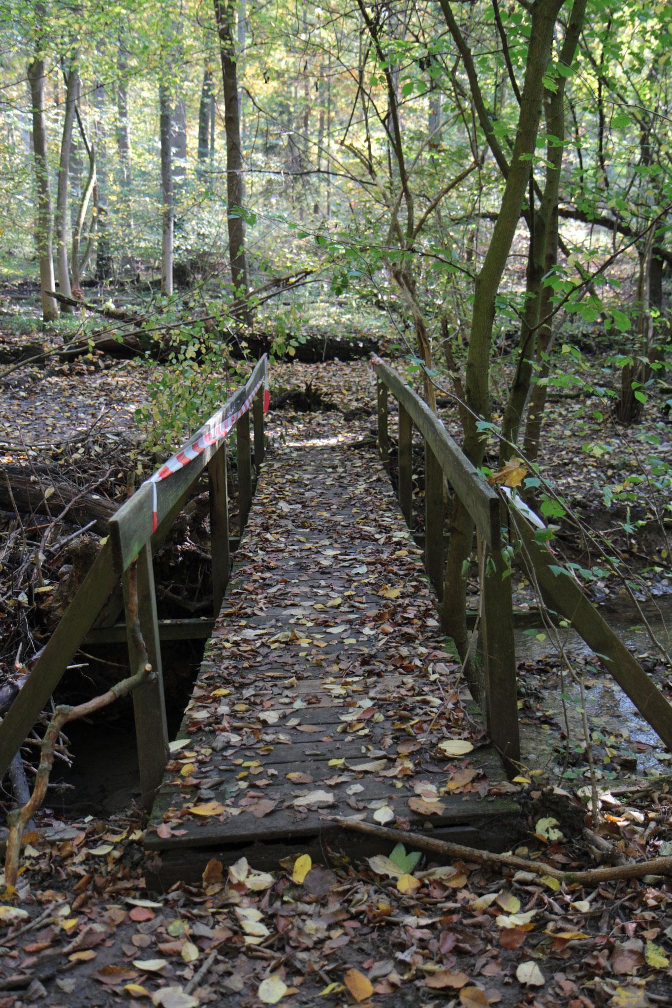 Will ich über diese Brücke gehen? Trägt sie mich? Was ist auf der anderen Seite?