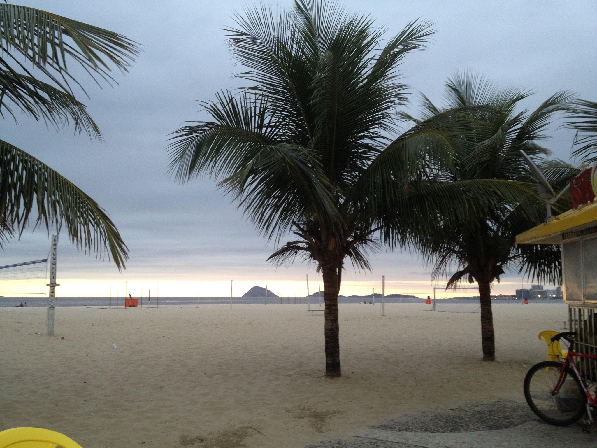 Palmen am Strand vor der rua Anchieta