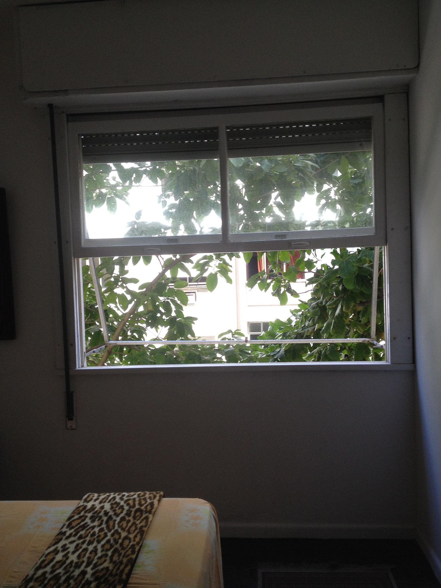 zweites Schalfzimmerfenster