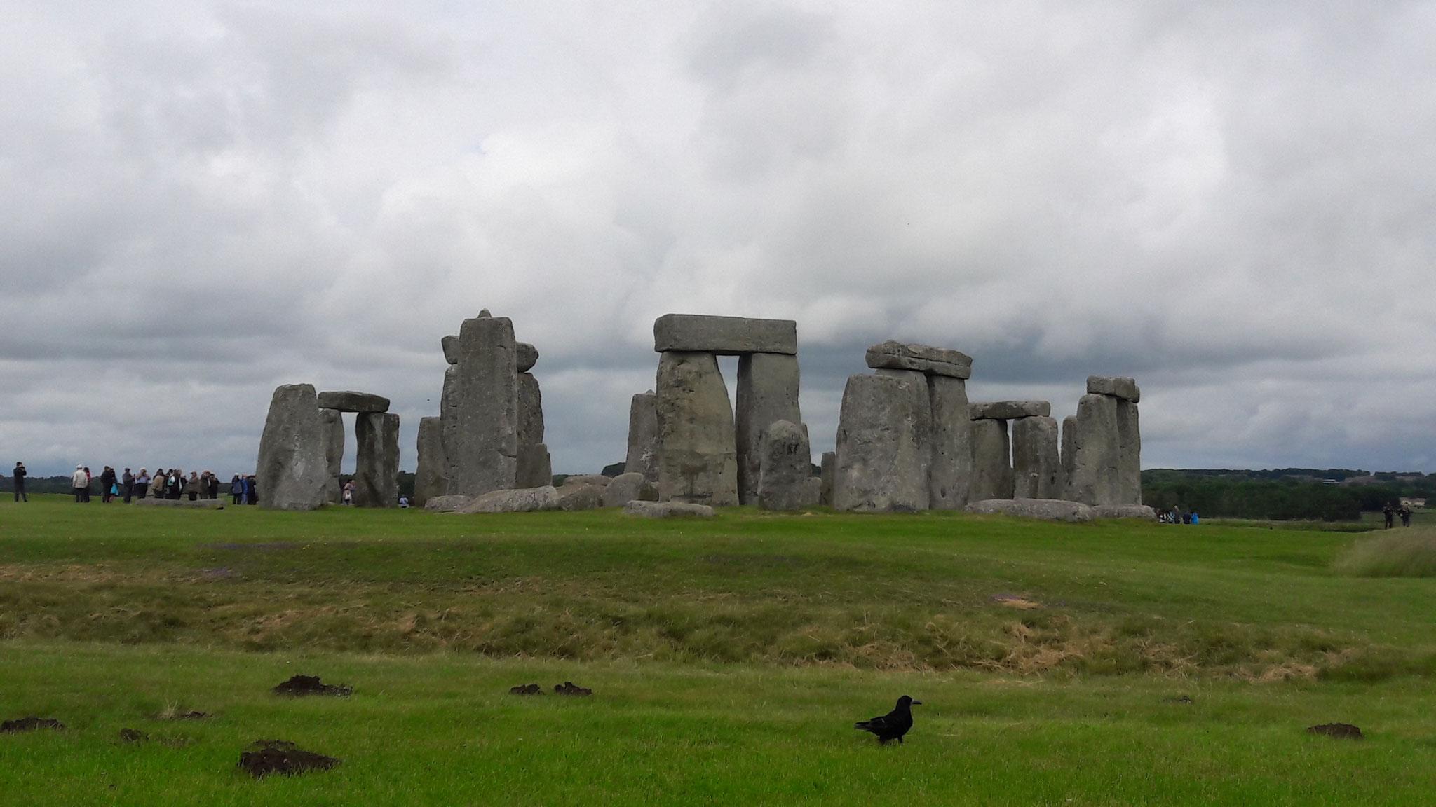 die sind über 5000 Jahre alt und wirklich riesig