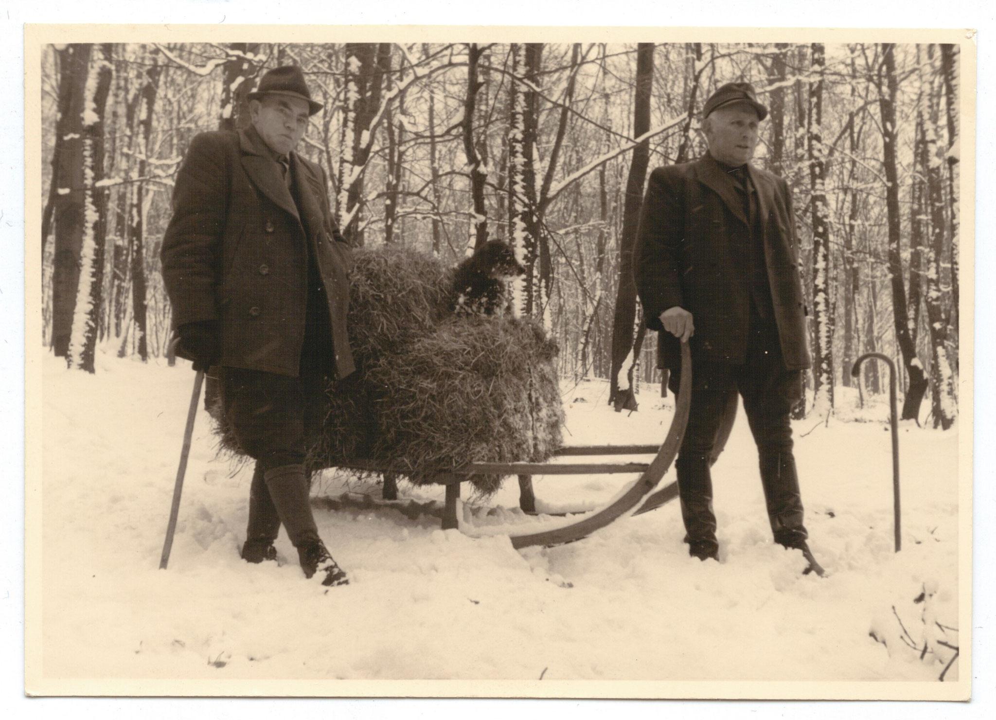 Wildfütterung durch den Revierförster in den 50er Jahren