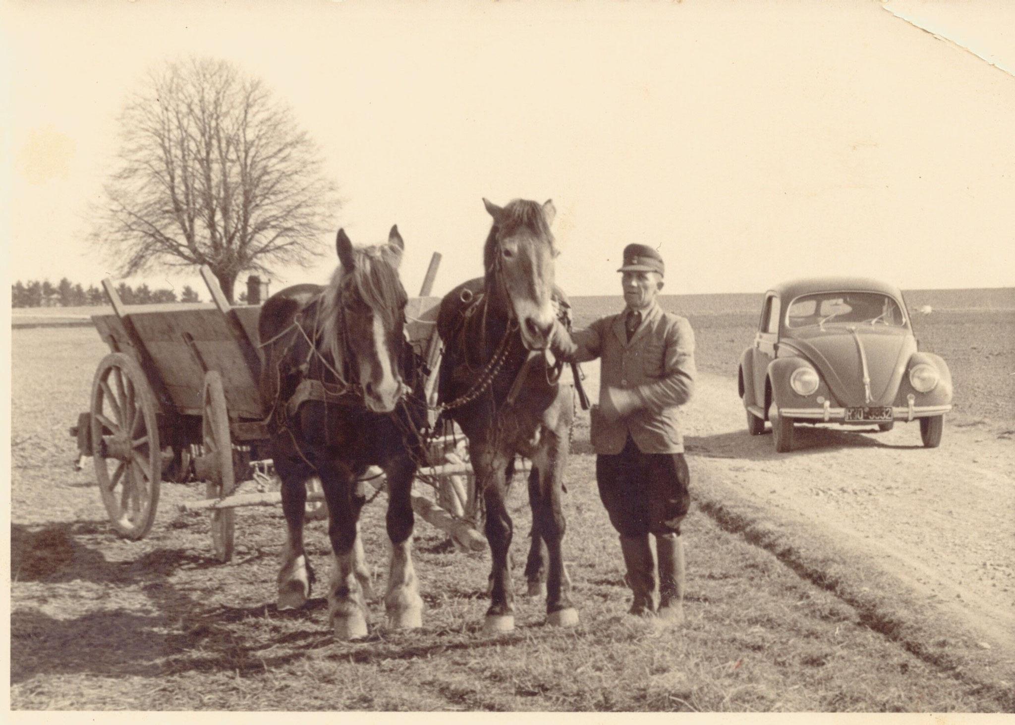 Anton Gröblinghoff mit Pferdefuhrwerk und Brezelkäfer in den 50er Jahren im Oberbergheimer Feld